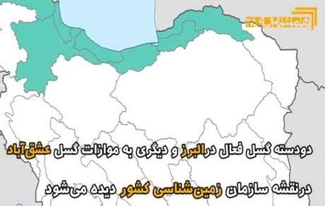 هشدار وقوع سونامی در ایران